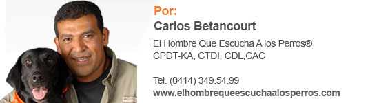 Columna Carlos Betancourt