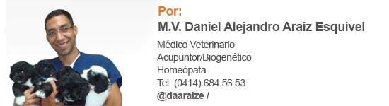 Daniel Alejandro Araiz veterinario
