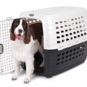 Petmate Compass 400 Kennel IATA, 84x56x63 cm - Perros de 20 a 32 kg