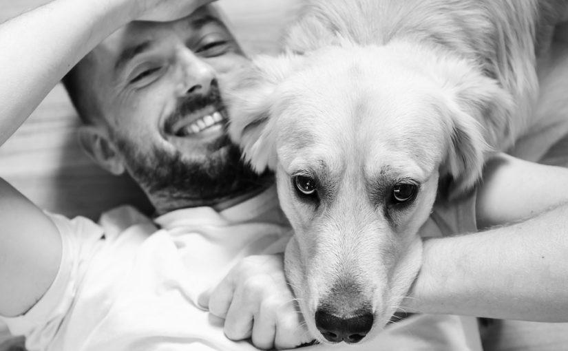 perro felicidad