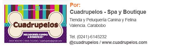 Cuadrupelos_Columna