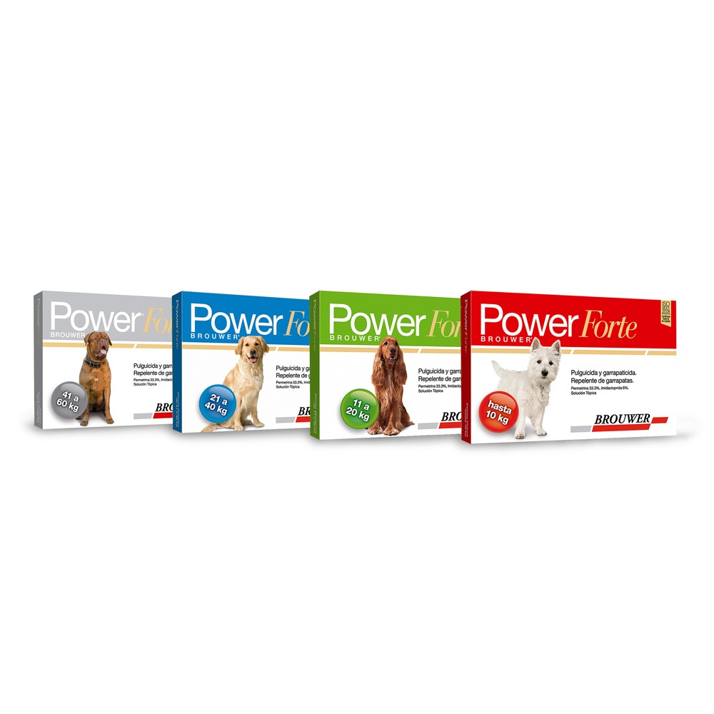 Brower power forte1