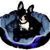 Creaciones Dorys Cama Caricias - Para Perros