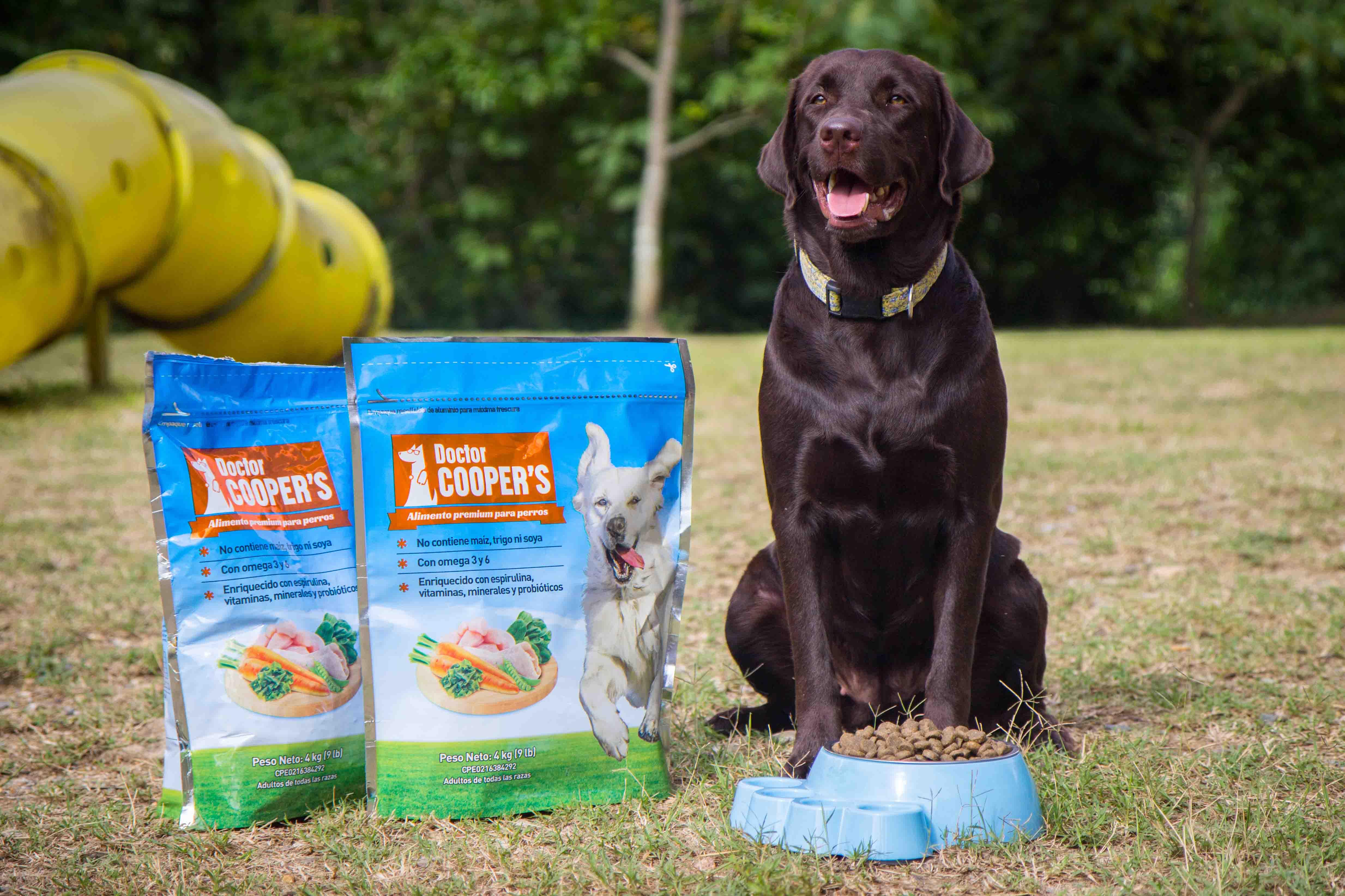 doctor cooper: una excelente alternativa para perros alérgicos