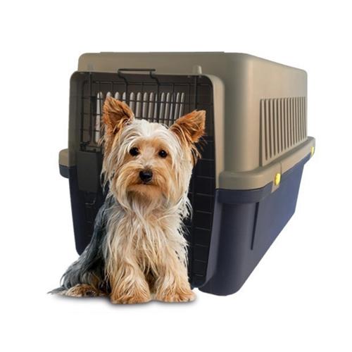 Kennel iata oasispet para perros peque os y gatos 45 x 31 x 30 cm mascotas ya - Casas para perros pequenos ...