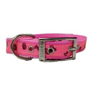 VyG collar decorado para perros