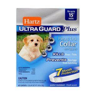Hartz Ultra Guard Collar Importado Anti garrapatas y pulgas - Para Perros extrapequeños