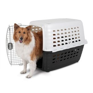 kennel petmate compass